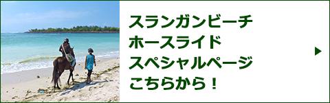 スランガンビーチ ホースライドスペシャルページバナー