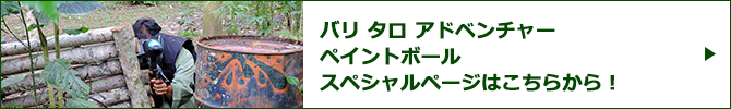 バリ タロ アドベンチャー ペイントボールスペシャルページバナー