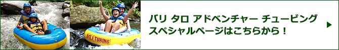 バリ タロ アドベンチャー チュービングスペシャルページバナー
