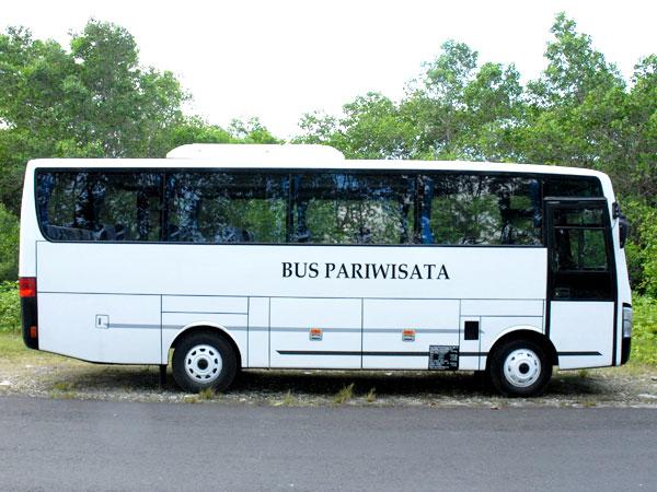 中型バス4