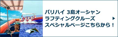 バリハイ 3島オーシャンラフティングクルーズスペシャルページバナー