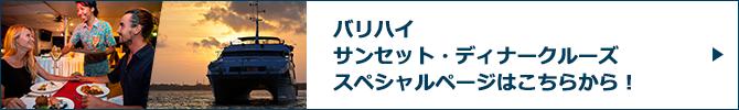バリハイ サンセット・ディナークルーズスペシャルページバナー