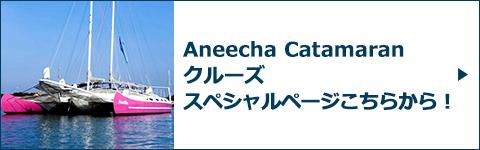 Aneecha Catamaran クルーズスペシャルページバナー