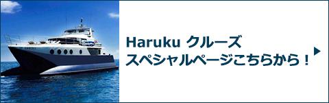 Haruku クルーズスペシャルページバナー