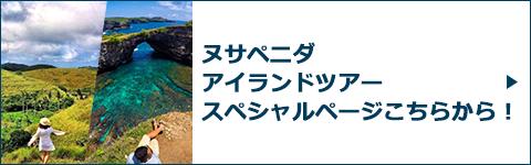 ヌサペニダアイランドツアースペシャルページバナー