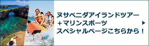 ヌサペニダアイランドツアー+マリンスポーツスペシャルページバナー