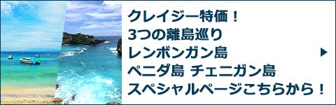3つの離島巡りスペシャルページバナー