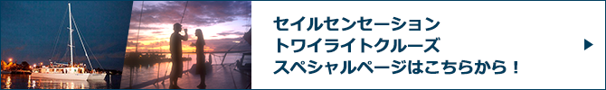 セイルセンセーション トワイライトクルーズスペシャルページバナー