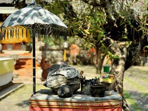 ジャガナタ寺院5