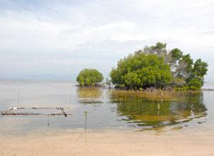 レンボガン島