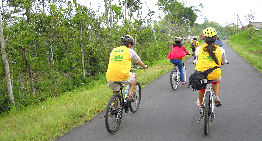 清々しい景色を楽しみながらサイクリング