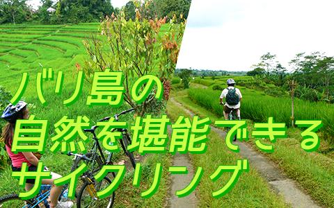 バリ島 厳選アクティビティ アユンリバー サイクリンググ 特徴