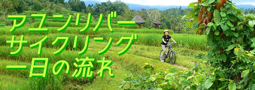 バリ島 厳選アクティビティ アユンリバー サイクリング 一日の流れ