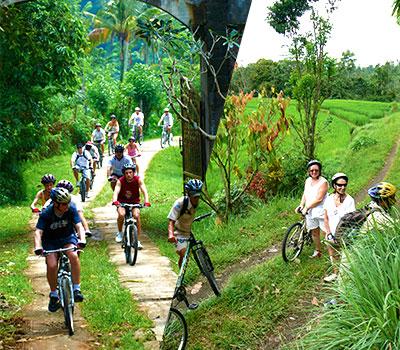 バリ島 厳選アクティビティ アユンリバー サイクリング 画像