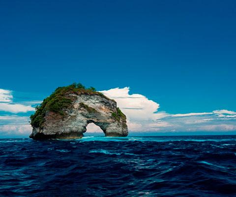 美しい海の中の景色