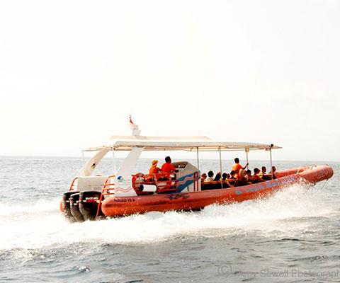 バリ島最速のクルーズ船