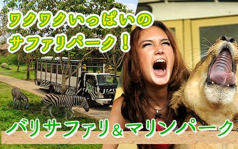 バリ島 厳選動物ふれあい バリ サファリ&マリンパーク