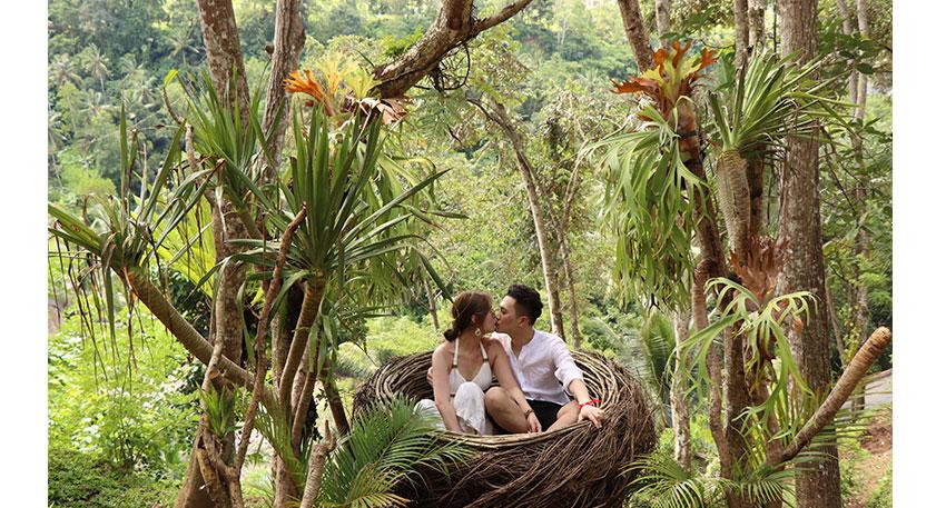 ロマンティックな撮影にもぴったりです