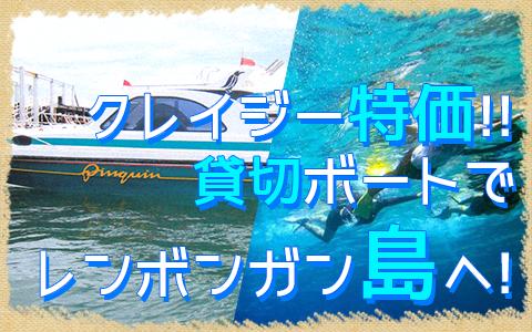 バリ島 厳選マリンスポーツ レンボンガン島往復貸切ボート 特徴