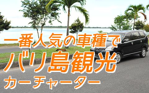 バリ島 厳選 カーチャーター トヨタ アパンザーG 特徴