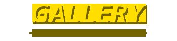 バリ島 厳選 カーチャーター トヨタ アパンザーG 写真で見る