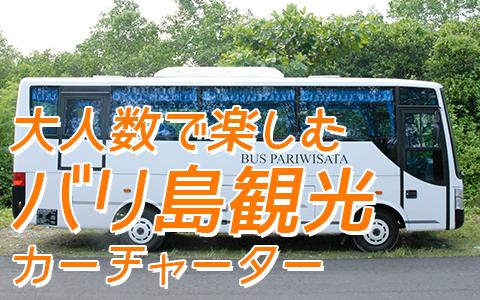 バリ島 厳選カーチャーター 中型バス 特徴