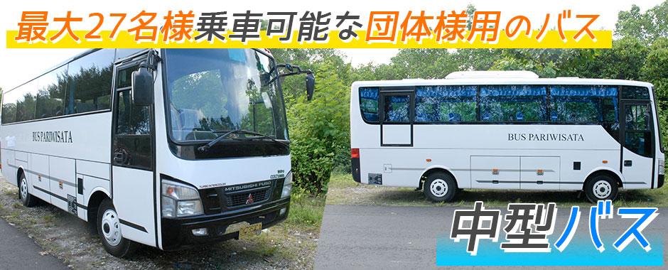 バリ島 厳選カーチャーター 中型バス