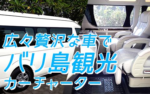 バリ島 厳選カーチャーター ハイエース特別仕様車 特徴