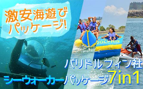 バリ島 厳選マリンスポーツ シーウォーカー・パッケージ7in1 バリ ドルフィン社