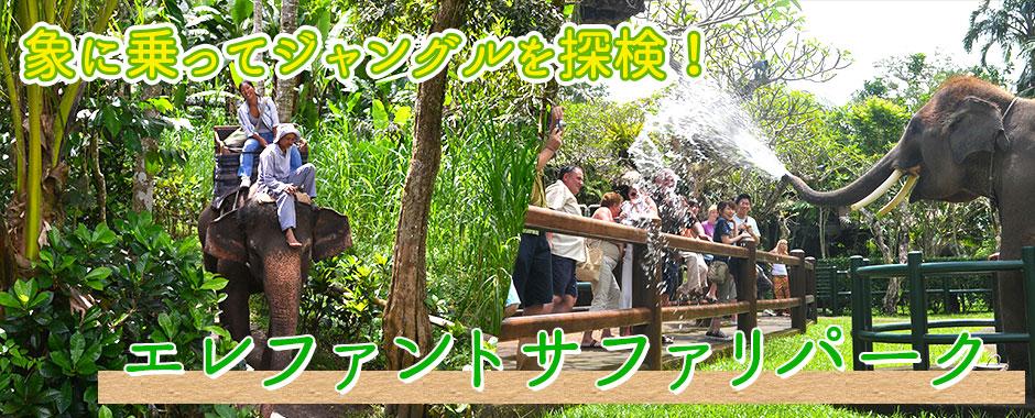 バリ島 厳選アクティビティ エレファントサファリパーク