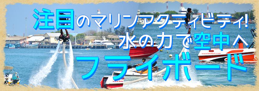 バリ島 厳選マリンスポーツ フライボード 特徴