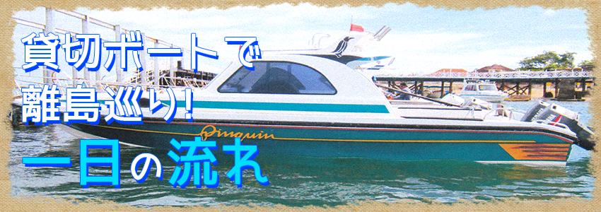 バリ島 厳選レンボンガン島 3つの離島巡り レンボンガン島、ペニダ島、チェニガン島 一日の流れ