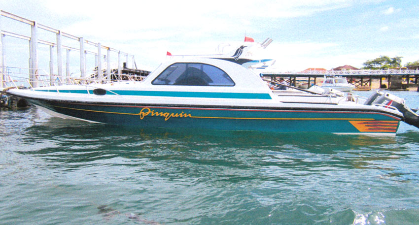 3つの離島巡り レンボンガン島、ペニダ島、チェニガン島