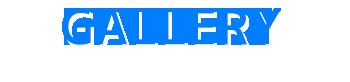 バリ島 厳選マリンスポーツ ジェットパック 写真で見る