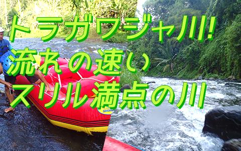バリ島 バリジャングルアドベンチャーパーク 特徴