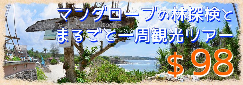バリ島 厳選レンボンガン島 マングローブ林とレンボンガン島まるごと一周観光ツアー 特徴