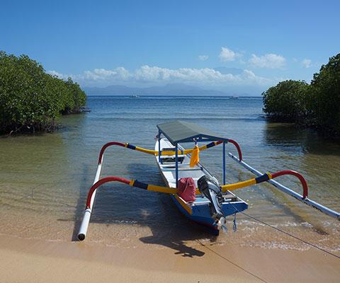 レンボンガン島の自然をたっぷり感じましょう