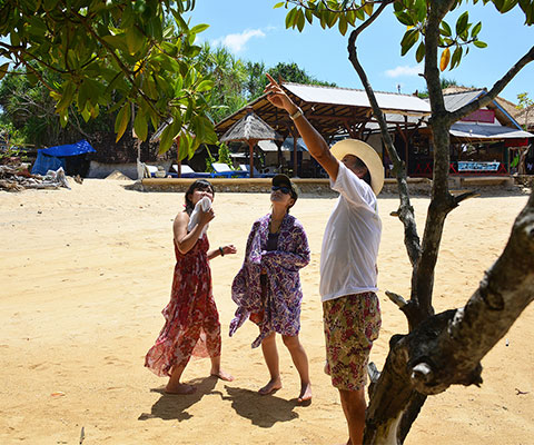 レンボンガン島の自然やマングローブについて勉強