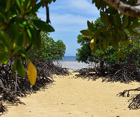 バリ島とはまた違った景色です