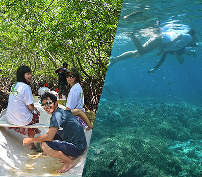 バリ島 厳選レンボンガン島 マングローブ探検とシュノーケリングツアー 画像