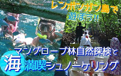 バリ島 厳選レンボンガン島 マングローブ林とサンゴ礁とお魚さんがお出迎え「シュノーケリング」ツアー