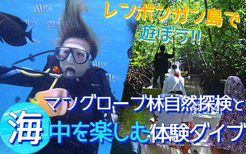 バリ島 厳選レンボンガン島 マングローブ林とサンゴ礁やキレイなお魚さんがお友達「体験ダイブ(ボートエントリー)」ツアー