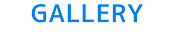 バリ島 厳選マリンスポーツ ヌサドゥア de マリンスポーツパック(バリ ドルフィン社) 写真で見る