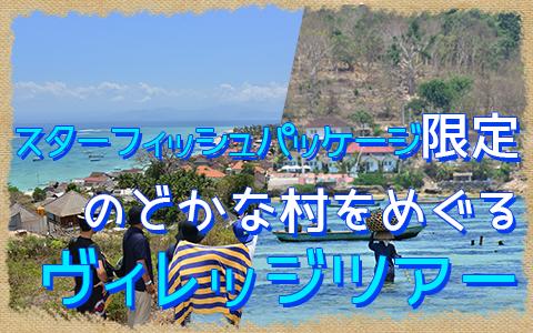 バリ島 厳選レンボンガン島 ヴィレッジツアー 特徴