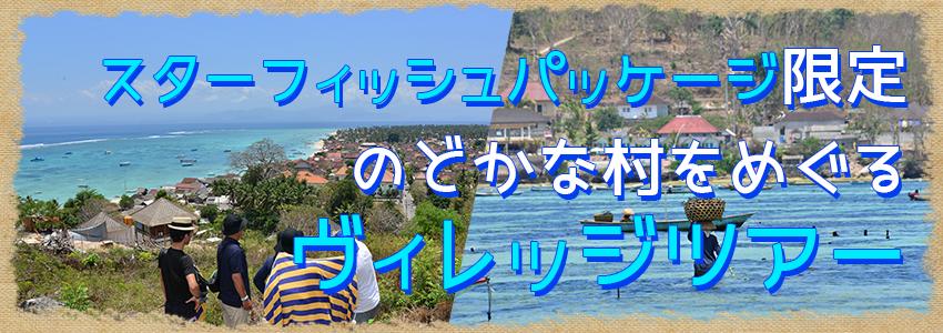 バリ島 厳選レンボンガン島 ヴィレッジツアー特徴