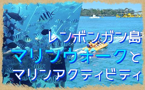 バリ島 厳選レンボンガン島 マリンウォーク 特徴