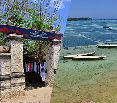 バリ島 厳選レンボンガン島 ヴィレッジツアー 画像
