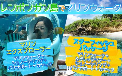 バリ島 厳選レンボンガン島 マリンウォーク