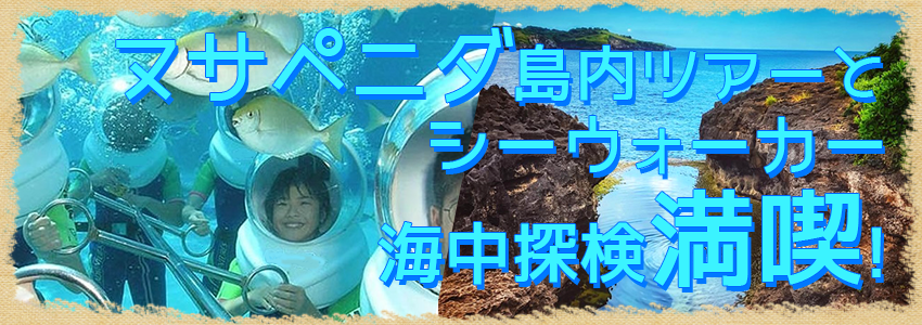 バリ島 厳選レンボンガン島 ヌサペニダアイランドツアー+シーウォーカー 特徴