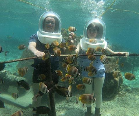 ヌサペニダで海中探検
